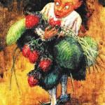 l'elfo delle fragole