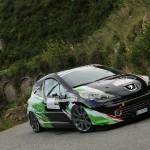 Peugeot 207 Kit Newtron
