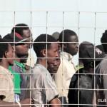 27 agosto 2013 Sbarco migranti al porto di Messina (35)