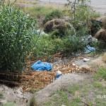 1 settembre 2014 rifiuti e suppellettili invadono il torrente Zafferia,  rischio idrogeologico  ed inquinamento ambientale (15)
