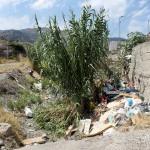 1 settembre 2014 rifiuti e suppellettili invadono il torrente Zafferia,  rischio idrogeologico  ed inquinamento ambientale (8)