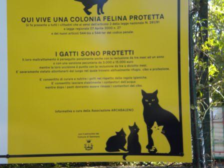 cartello4