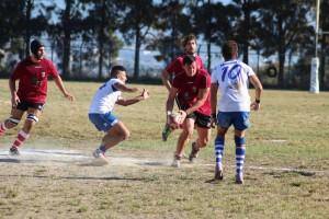 rugby amatori