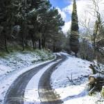 Nevicata del 30 dicembre 2014 Messina Dinnamare (4)