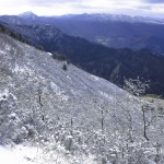 Nevicata del 30 dicembre 2014 Messina Dinnamare (9)