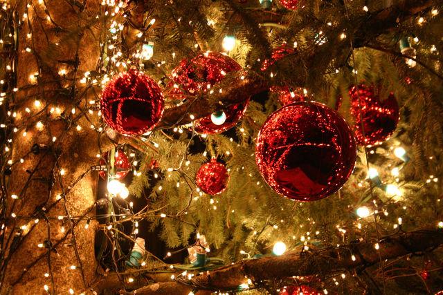 Festa Del Natale.Festa Dell Accensione Nei Quartieri Al Via I Festeggiamenti