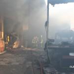Incendio Frigogel 11 gennaio 2014 (8)