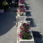 guerriglia_gardening