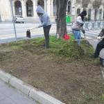 piazza_antonello