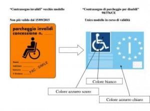 pass disabili
