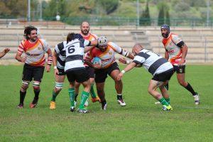 rugby_amadori