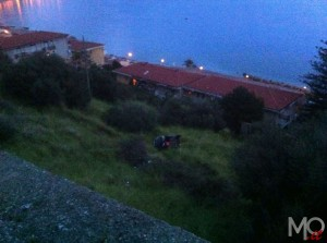 incidente_panoramica