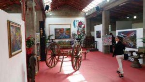 salonia_museo